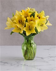 Yellow Delight Lily Blossoms