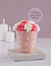 Flowers Bloom Carnations Pot