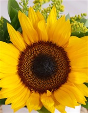 Personalised Squeeze the Day Sunflower