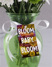 Bloom Baby Sprays In Vase