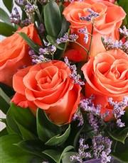 Sunset Good Luck Orange Blooms