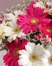 Basket of Birthday Gerberas