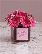 Passionate Pink Gerbera Arrangement