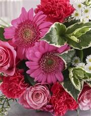 Pink Floral Sensations