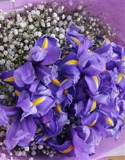 Bouquet of Blue Irises