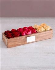 Radiant Rose Sensation