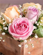 Dainty Pastel Rose Arrangement