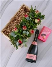 Bright Pink Rose Fantasia