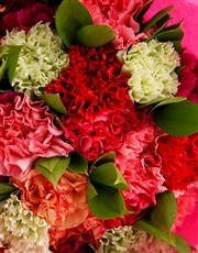 Grand Carnation Surprise Gift