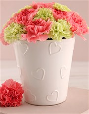 Pink and Green Carnation Pot
