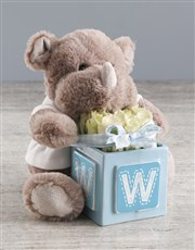 Welcome Home Baby Teddy And White Rose Gift