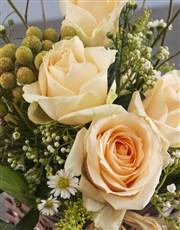 Charming Cream Rose Blossoms