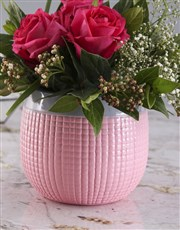 Cerise Roses In Pink Pot
