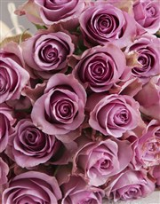 Happy Birthday Lilac Rose Blooms