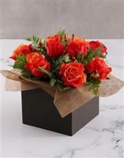Cherry Brandy Roses in Black Box