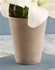 Lovely Lilies in Cement Pot