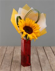Single Sunflower in Colour Vase