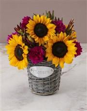 Sunny Floral Mix In Flower Basket