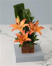 Orange Lilies in Wooden Box