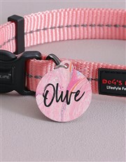 Personalised Paint ID Tag And Collar