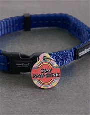 Personalised Stay Paw ID Tag and Collar