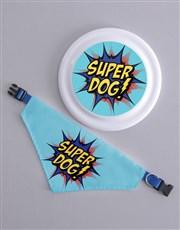 Super Frisbee and Bandanna