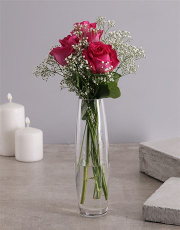 spring-day: 3 Cerise Roses in a Glass Vase!