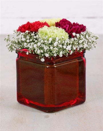 spring-day: Mixed Carnations and Million Star Vase!