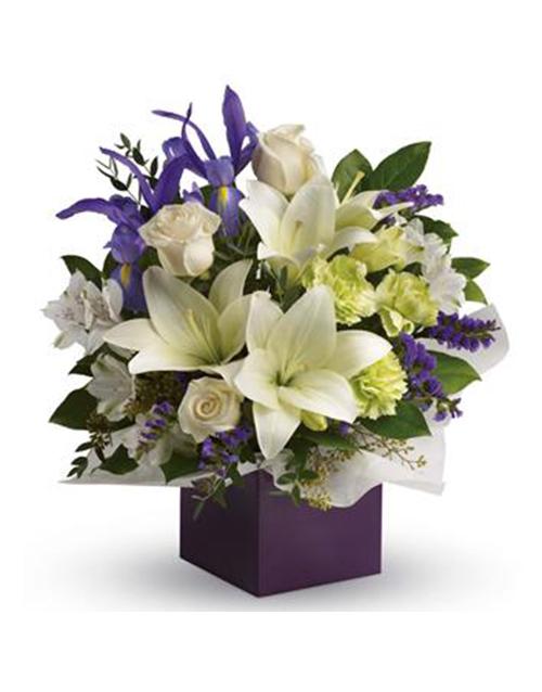 flowers: Graceful Beauty!
