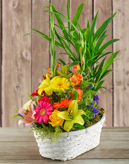 best-sellers: Plant with Flower Arrangement in a Basket!