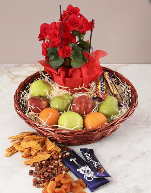 gourmet: Brimming Gourmet Begonia Basket!