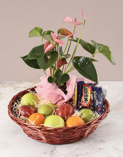 gourmet: Pink Anthurium and Munchies Basket!