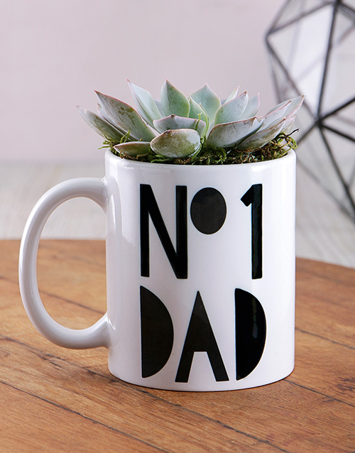 fathers-day: No1 Dad Succulent Mug!