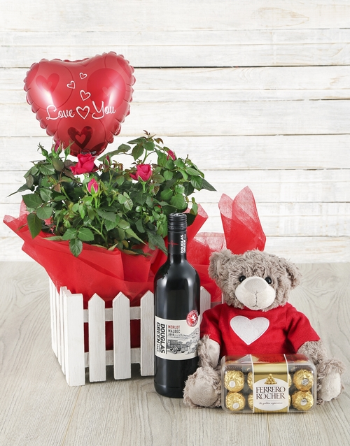 anniversary: 14cm Rose Bush, Wine, Balloon, Teddy & Ferrero!
