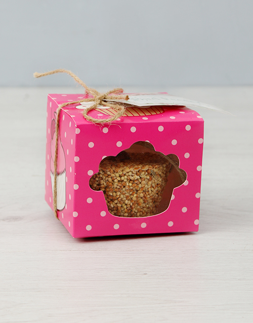 in-a-box: Cupcake Birdseed Cake!