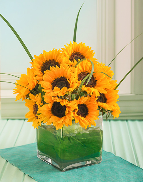 friendship: Sensational Sunflowers in a Square Glass Vase!