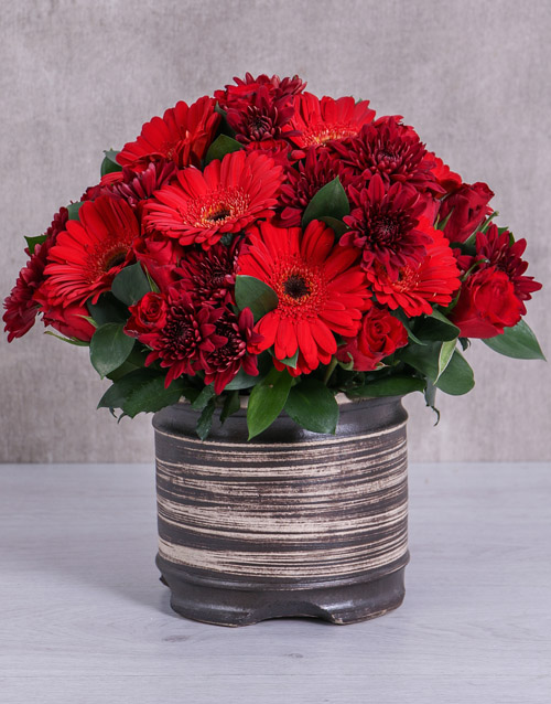 colour: Red Sprays, Roses and Gerberas in a Beautiful Pott!