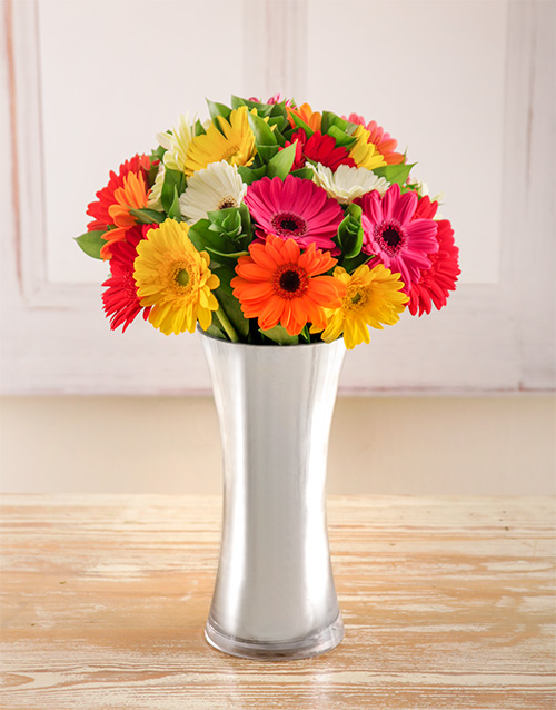 coloured-vases: Mixed Gerberas in a Silver Vase!