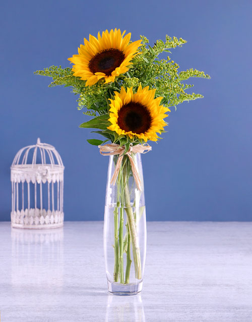 sunflowers: Sunflowers & Golden Rod!