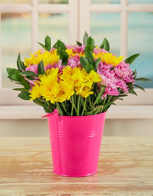 coloured-vases: Bucket Full of Daisies!