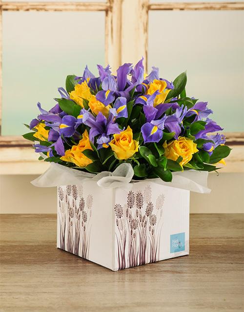in-a-box: Artistic Irises in a Box!