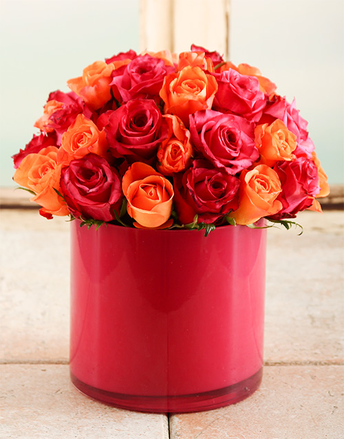 roses: Fire Star Rose Vase!