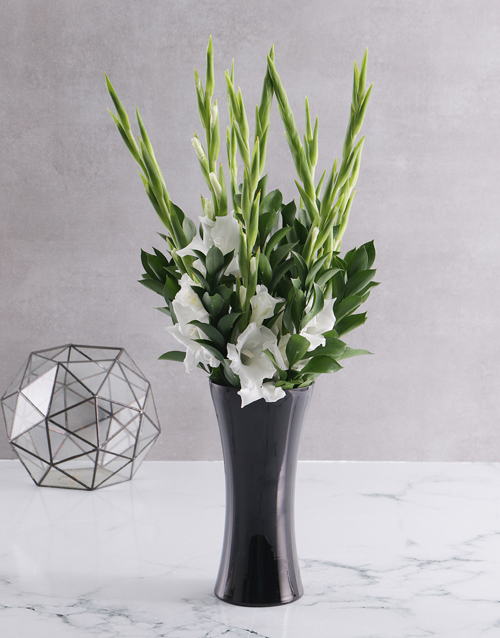 colour: Black and white Gladiolus vase!