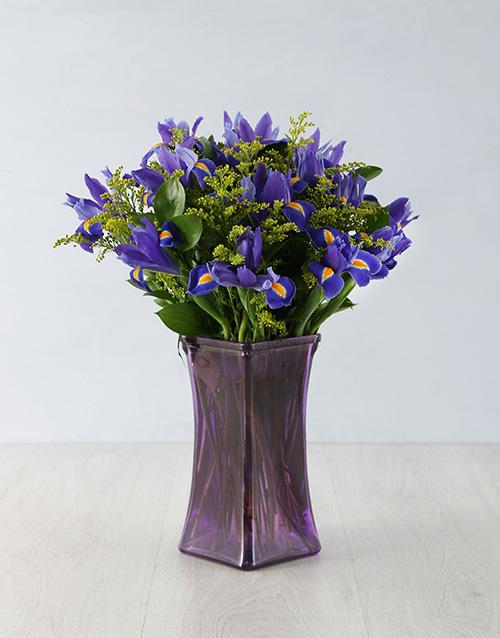 irises: Loving Iris Arrangement!