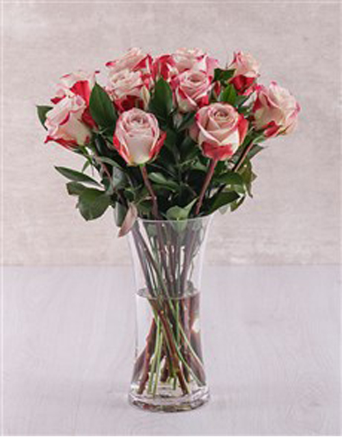 roses: Candy Cane Rose Vase!