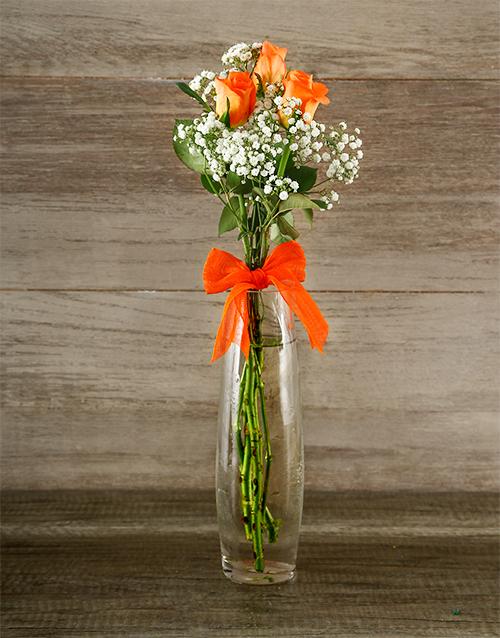 colour: Tall Orange Elegance!
