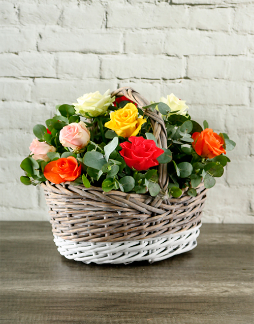 anniversary: Rainbow Roses in Gorgeous Basket!