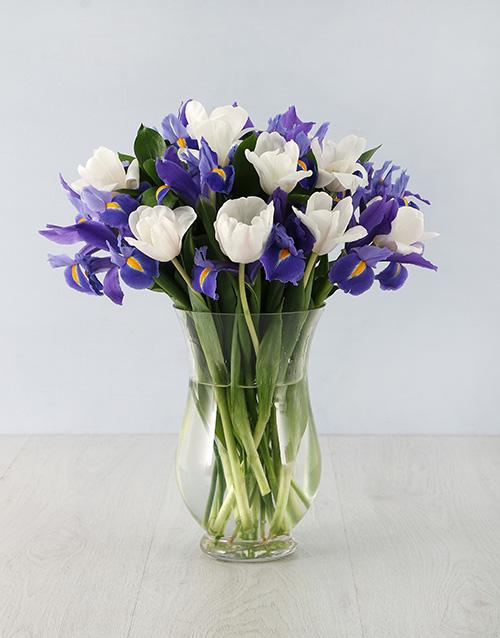 tulips: Irises & Tulips in Hurricane Vase!
