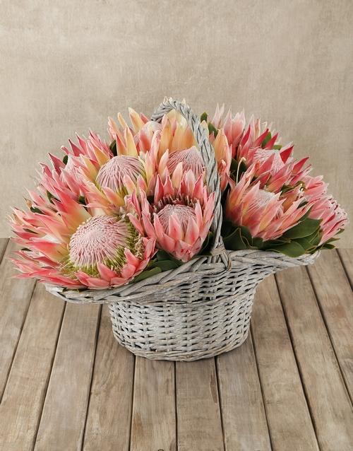seasonal: Protea Power Basket!