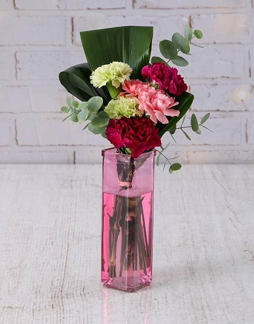 coloured-vases: Mixed Carnations in Straight Vase!